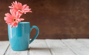 Picture flowers, mug, wood, pink, flowers, chrysanthemum, mug