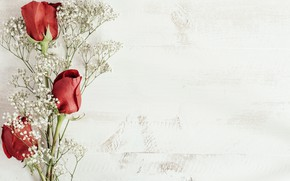 Picture background, buds, twigs, Red roses