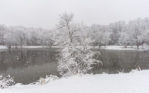 Picture winter, lake, snow, woodland, snowing