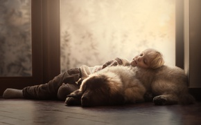 Picture house, dog, boy