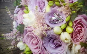Picture roses, bouquet, ring, decoration