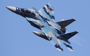 Picture Japan, F-15DJ, Tactical fighter