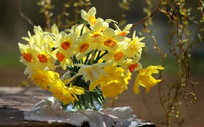 Picture flowers, branches, spring, vase, napkin, daffodils