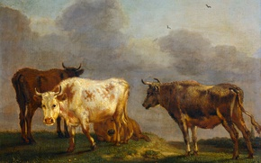 Wallpaper animals, tree, oil, picture, Paulus Potter, Four Cows in a Meadow