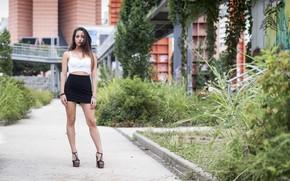 Picture summer, look, model, hair, legs, beauty, Carlotta
