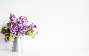 Picture flowers, bouquet, lilac, polyvalent