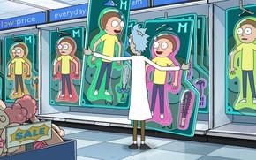 Picture cartoon, the series, the cartoon series, Rick and Morty, Rick and Morty, cartoon series, Plumbous, …