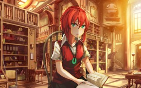 Wallpaper bride of the sorcerer, anime, The Ancient Magus' Bride, girl, art