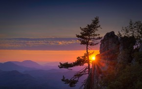 Picture the sky, sunset, mountains, rock, tree, pine