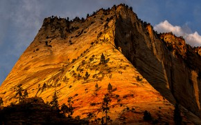 Picture the sun, clouds, trees, mountains, rocks, Utah, USA, Zion National Park, Zion