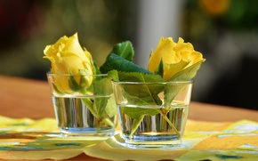 Picture flowers, roses, glasses, napkin