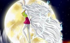 Picture kawaii, game, One Piece, long hair, rabbit, anime, lion, warrior, manga, strong, bishojo, Mink, Carrot, …