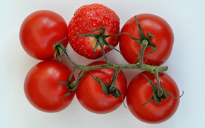 Picture collage, strawberry, tomatoes, tomatoes