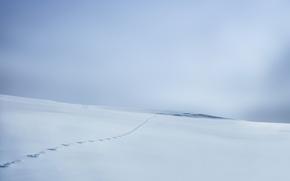 Wallpaper winter, snow, field, traces
