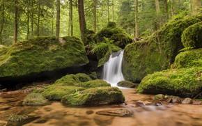 Wallpaper stones, Baden-Württemberg, Germany, Gertelbach If, Baden-Württemberg, waterfall, Germany, moss, Black Forest, The black forest, river, ...
