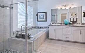 Picture room, mirror, bath, lamp, wardrobe, design, bathroom