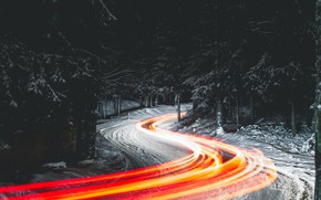 Picture road, forest, night, lights