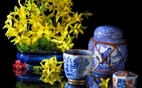 Picture flowers, dishes, porcelain