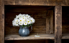 Picture flowers, background, pitcher