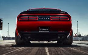 Picture Dodge Challenger, 2018, Muscle car, SRT, Demon, 2018 Dodge Challenger SRT Demon