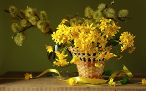 Picture basket, spring, Verba, primrose