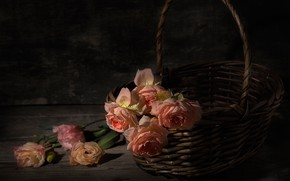 Picture drops, roses, basket