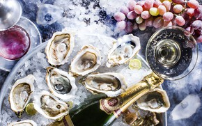 Picture ice, grapes, champagne, caviar, oysters