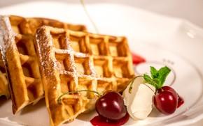 Picture ice cream, dessert, waffles, cherry