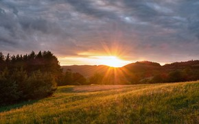 Picture trees, sunset, Czech Republic, meadow, Czech Republic, Central Bohemia, Central Bohemia