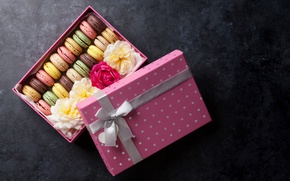 Picture flowers, box, cookies, box, flower, decor, sweet, macaroon