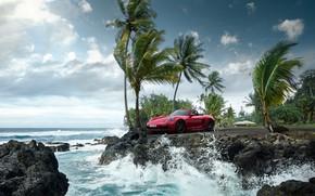 Picture wave, palm trees, the ocean, rocks, Porsche