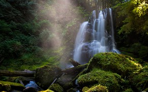 Picture greens, waterfall, stream, couples