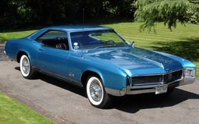 Picture auto, grass, asphalt, trees, background, antenna, metalik, wheel, disk, green, spokes, classic, 1966, bus, classic, …