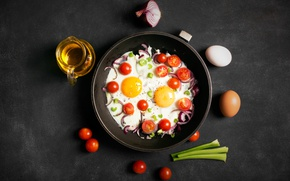 Picture background, oil, bow, scrambled eggs, tomatoes, oil, Eggs, tomato