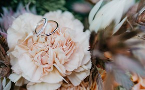 Picture flowers, bouquet, ring, wedding