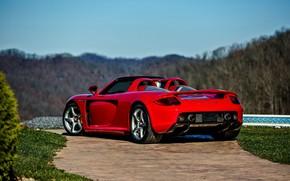 Picture Porsche, Carrera, Supercar