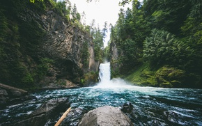 Picture forest, trees, nature, stones, waterfall, Oregon, Toketee Falls