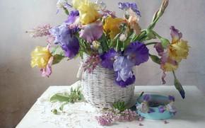 Picture basket, irises, Lupin