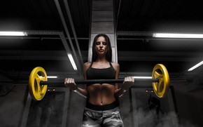 Picture brunette, workout, fitness