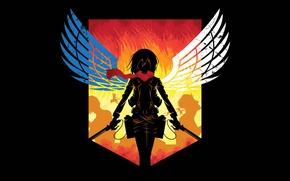 Picture anime, asian, manga, japanese, asiatic, Shingeki no Kyojin, Attack On Titan, shounen, 002