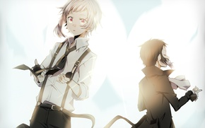 Picture anime, art, Bungou Stray Dogs