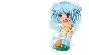 Picture fish, minimalism, neko, Chibi, jar