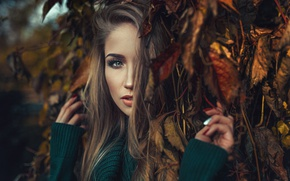 Picture autumn, look, leaves, girl, branches, face, mood, Asia Piorkowska