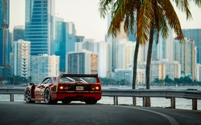 Wallpaper F40, photographer, Florida, the city, Ferrari, morning, Miami, Larry Chen