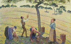 Picture Camille Pissarro, people, pointillism, Collectors Of Apples. Eragny, picture, genre