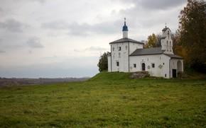 Picture summer, landscape, Church, temple, Russia, Pskov oblast