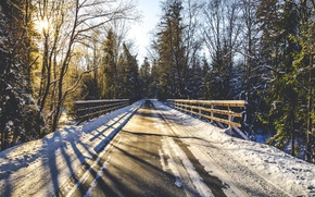 Picture winter, road, forest, light, morning