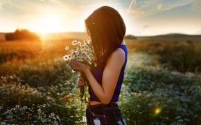 Picture field, summer, girl, the sun, chamomile, profile