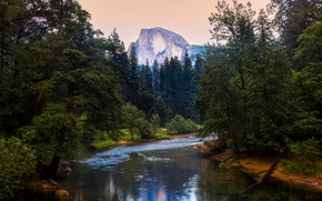 Picture forest, mountains, CA, USA, river, California, Yosemite National Park, Half Dome, Merced River