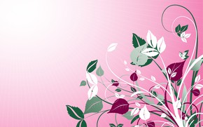 Picture texture, pink background, flora, l background